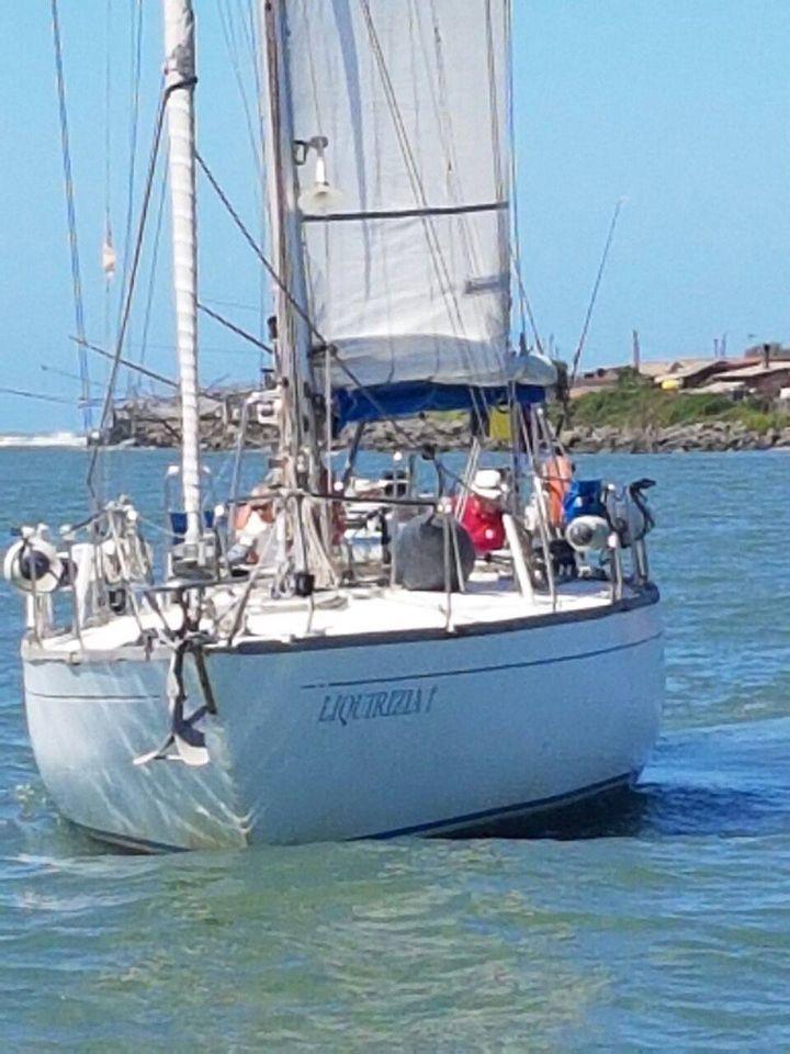 Orca 43