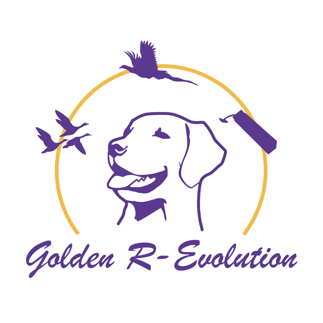Golden R-Evolution