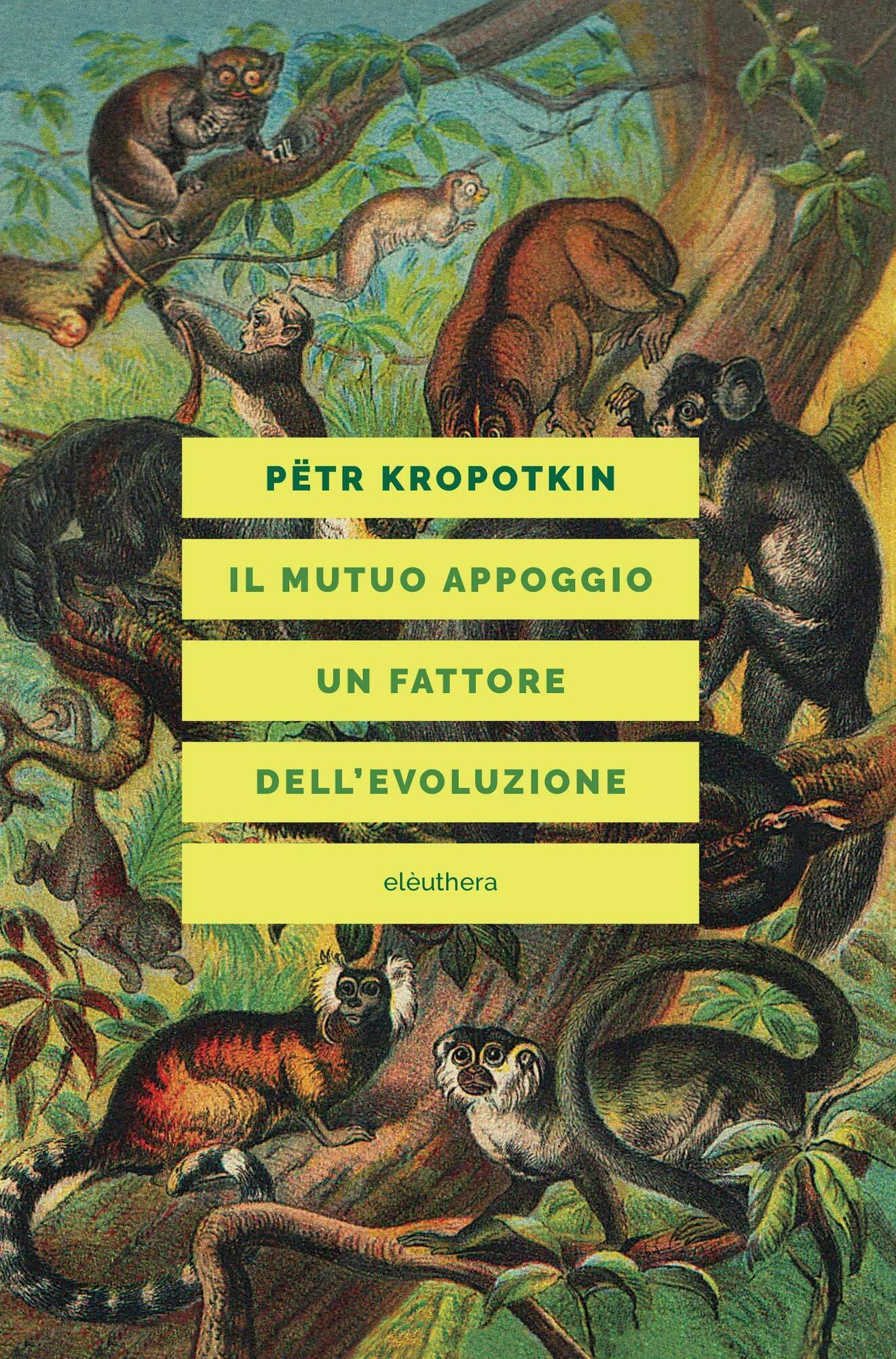 Kropotkin. Solidarietà invisibile